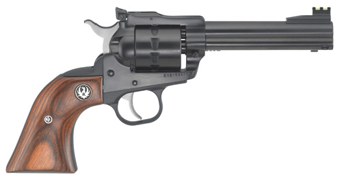 Ruger SINGLE TEN 22 LR