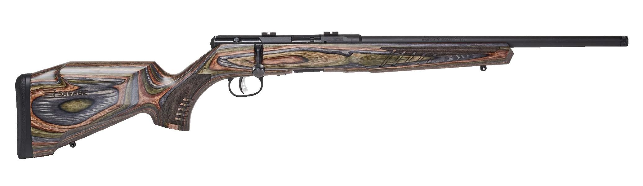 Savage Arms B22 BNS-SR 22 LR