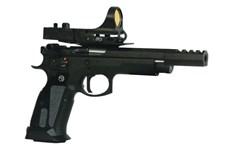 CZ91174