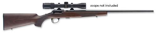 Browning T-BOLT SPORTER 22 LR